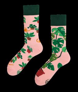 #66-skarpety-skarpetki-kolorowe-manymornings-plant-lover-casual-streetwear-urbanstaff (5)