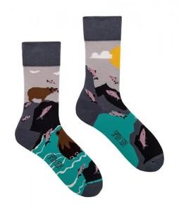 #44-kolorowe-skarpety-spoxsox-niedzwiedzie-urbanstaff-casual-streetwear (1)