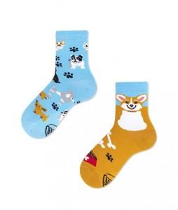 #23-kolorowe-skarpetki-dzięciece-manymornings-playful-dog-kids-urbanstaff-casual-streetwear-(1)