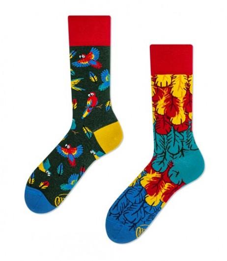 97#-kolorowe-skarpetki-many-mornings-paradise-parrot-regular-urbanstaff-casual-streetwear-(4)