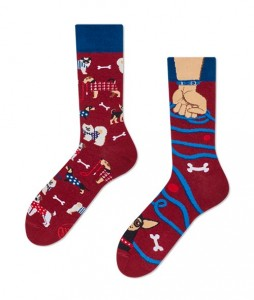 131#-kolorowe-skarpetki-many-mornings-walkie-doggie-socks-regular-urbanstaff-casual-streetwear-(1)